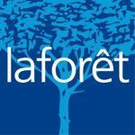 LAFORET Immobilier - VNP IMMOBILIER